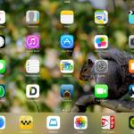 iPad de Manuel Guerra