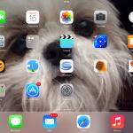 iPad de Yasmin Delgado von Eitzen