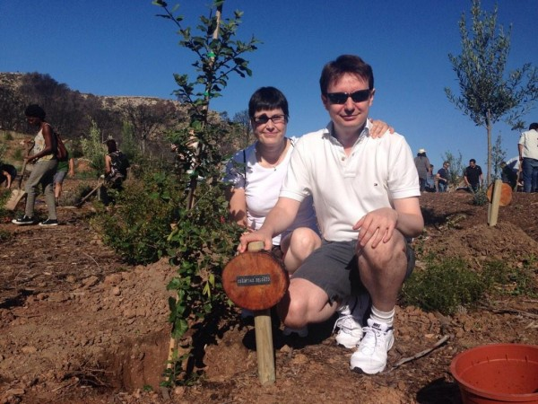 Plantando una encina en Palma de Mallorca