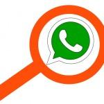 WhatsApp: cómo buscar un texto en los chats o un contacto en iPhone y Android