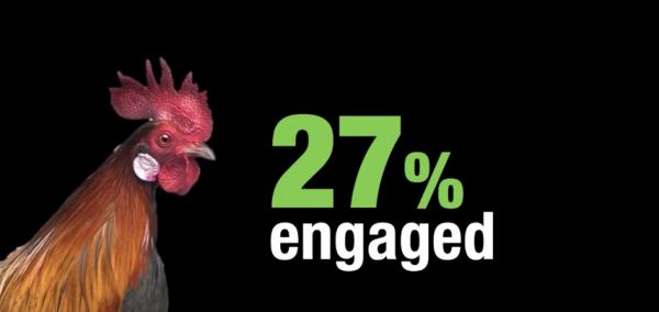 27 % de empleados comprometidos