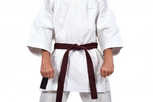 Autodefensa de marrones (cinturón marrón)