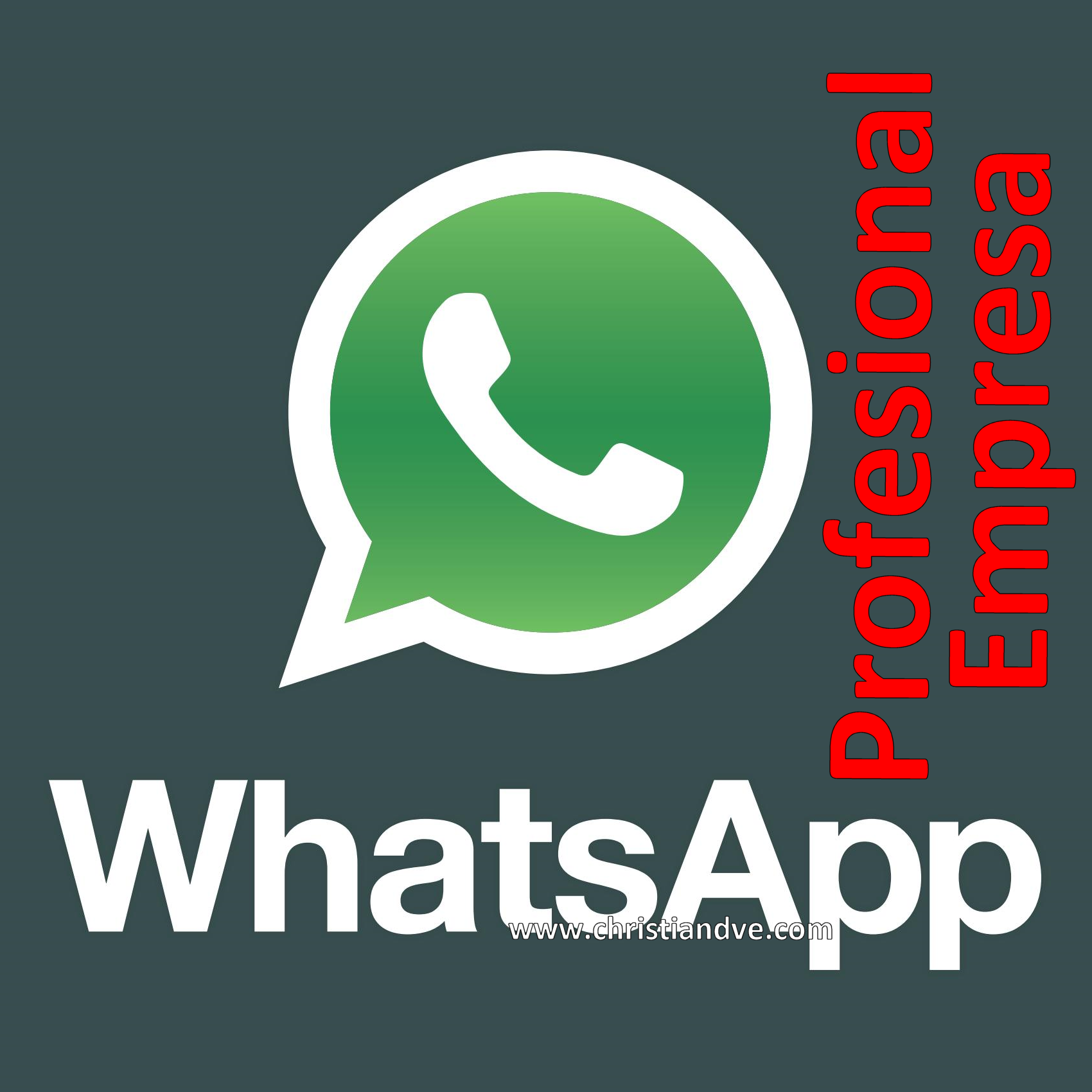 WhatsApp profesional-empresa: ¿Qué se puede hacer y qué no según ...
