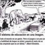 El sistema de educación en una imagen....