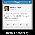 A lo mejor la nariz chata de Voldemort es porque se fue contra el muro equivocado en la estación de tren...