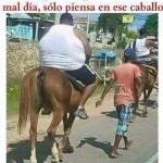 Cuando pienses que tienes un mal día, piensa en ese caballo