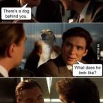 Hay un perro detrás de ti...