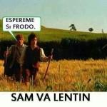 Espéreme, Sr. Frodo... Sam va lentín...