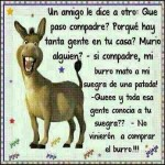 El burro...