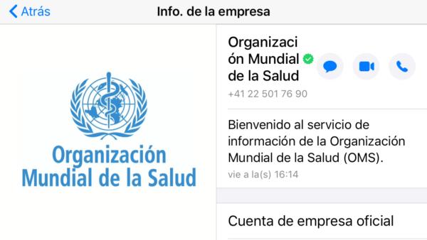 Cuenta oficial de la OMS (Organización Mundial de la Salud) por WhatsApp, con el tic de verificada